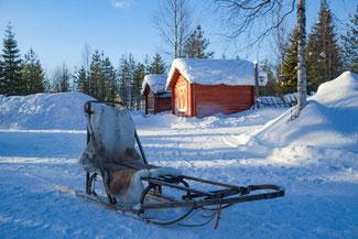 Lappland, Finnland, Finnisch Lappland, Die Traumreiser, Levi, Hundeschlitten, Schlittentour, Huskey, Huskies