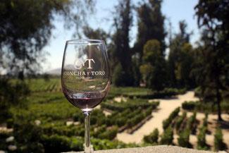 Concha y Toro, Weingut, Weintour, Santiago de Chile, Südamerika, Chile, Die Traumreiser