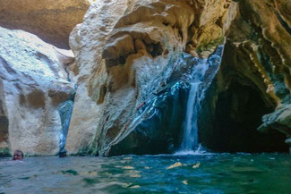 Oman, Arabien, Die Traumreiser, Wadi Shab, Oase, Fluss