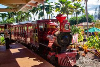 Dole Plantation, Oahu, Hawaii, USA, Strand, Die Traumreiser