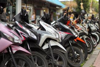 Roller, Indonesien, Bali