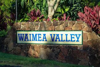 Waimea Valley, Oahu, Hawaii, USA, Strand, Die Traumreiser