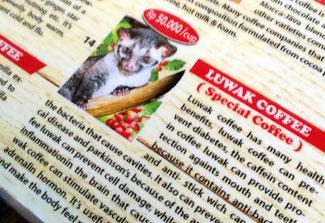 Der weltbekannte Luwak Kaffee