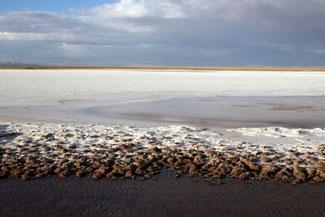 Salzsee, Atacama, Atacamawüste, Südamerika, Chile, Die Traumreiser