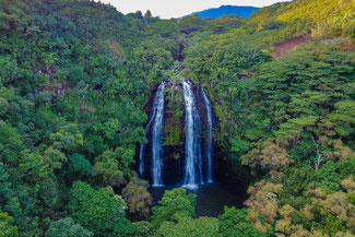 Opeaka'a Wasserfälle auf Kauai im Bundesstaat Hawaii