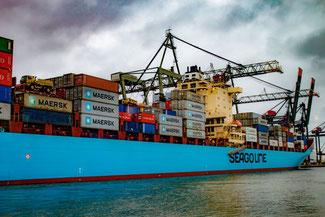 Schiff, COntainer, Hafen, Rotterdam, Niederlande, Die Traumreiser