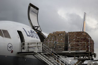 Lufthansa, Cargo, Flughafen Frankfurt, die Traumreiser