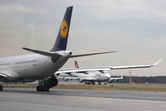 Flughafen Frankfurt, Die Traumreiser