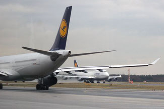 Flughafentour, Flughafen Frankfurt, Die Traumreiser