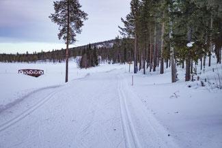Lappland, Finnland, Finnisch Lappland, Die Traumreiser, Levi, Skifahren, Skigebiet, Langlauf