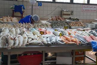 Abu Dhabi, UAE, VAE, Vereinigte Arabische Emirate, Fischmarkt Abu Dhabi