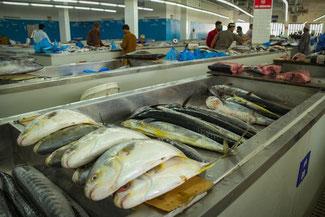 Oman, Arabien, Die Traumreiser, Mutrah Fischmarkt, Markt