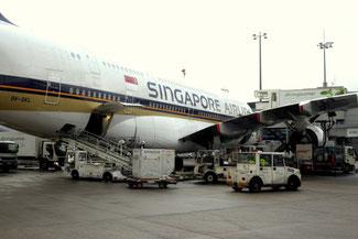 Airbus A380, Frankfurt, Fraport, Singapore Airlines, Die Traumreiser