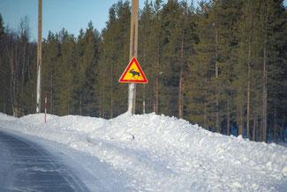 Lappland, Finnland, Finnisch Lappland, Die Traumreiser, Rentiere, Schild