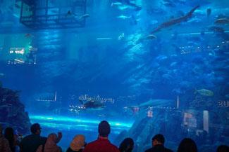Dubai, VAE, UAE, Vereinigte Arabischen Emirate, Die Traumreiser, Mall of Dubai