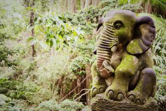 Skulpturen im Affenwald