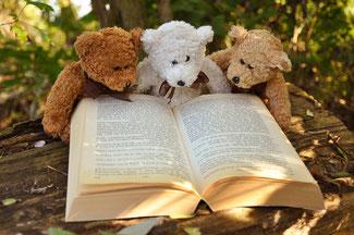 テディベアが本を読んでいる写真、teddy-bear-2855982_1280のPixabayからの画像
