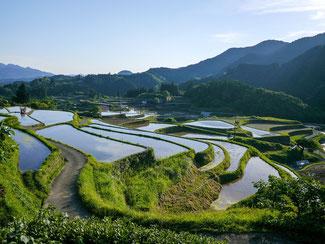 熊本の棚田の写真 Kohji AsakawaによるPixabayからの画像