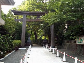 東郷神社 鳥居
