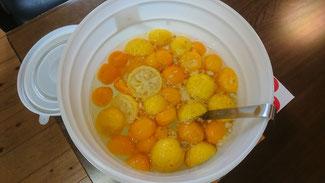 陶板浴ハイジ 酵素ジュース