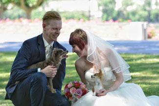 Fotograf Hochzeit Schwerin, Hochzeitsfotograf Schwerin, Hochzeitsfotos Schwerin, Hochzeitsfotografie Schwerin, 2016