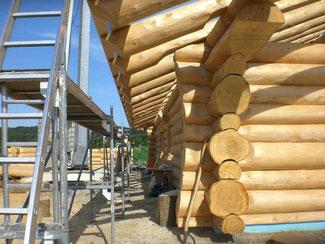Blockhausbau - Naturstammhaus - Baumstammhaus - Baustelle - Holzhütte  -  Handarbeit - Holzbau - Hausbau - Handwerk
