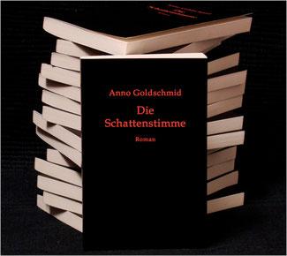 Anno Goldschmid: Die Schattenstimme, Roman