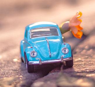 Autoversicherungsschutz