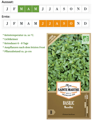 "Buschbasilikum ""Marseiller Basilikum"" vom Züchter Ferme de Saint Marthe bei www.the-golden-rabbit.de"