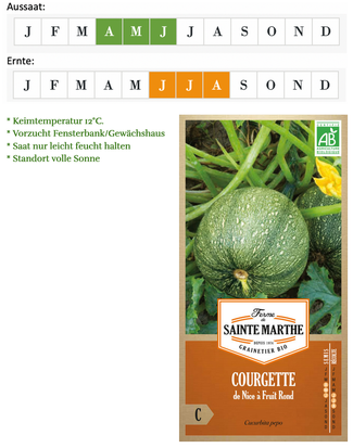 "Zucchino ""de Nice à Fruit Rond"" von Ferme de Saint Marie bei www.the-golden-rabbit.de"