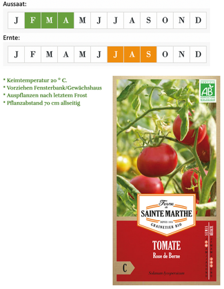 Tomate Rose de Berne von Ferme de Sainte Marthe bei www.the-golden-rabbit.de