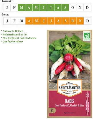Die leckersten Radieschen: Saatgut Mix von Ferme de Saint Marthe bei www.the-golden-rabbit.de