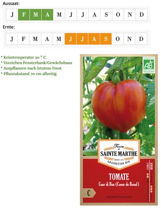 Tomate Cuore di Bue / Ochsenherz von Ferme de Sainte Marthe bei www.the-golden-rabbit.de