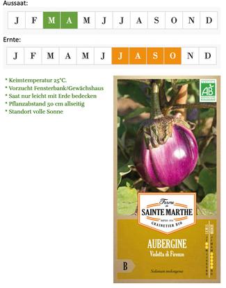 "Aubergine ""Violetta di Firenze"" von Ferme de Saint Marie bei www.the-golden-rabbit.de"
