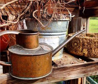 HAWS Indoor Pot Waterer - Die schönste Art seine Zimmerpflanzen zu gießen:   www.the-golden-rabbit.de