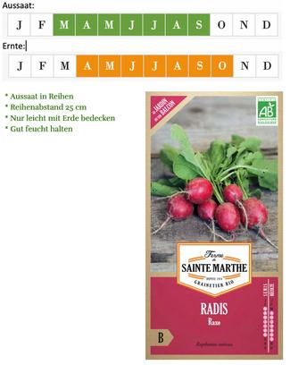 Radies Saatgut Raxe von Ferme de Saint Marthe bei www.the-golden-rabbit.de