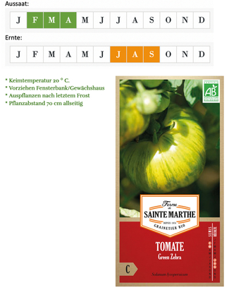 Tomate Green Zebra von Ferme de Sainte Marthe bei www.the-golden-rabbit.de