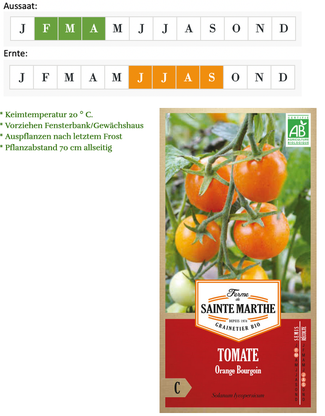 Tomate Orange Bourgoin von Ferme de Sainte Marthe bei www.the-golden-rabbit.de