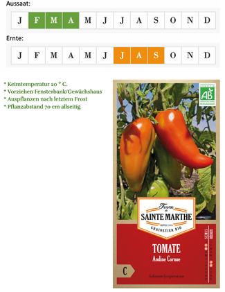 Tomate Andenhorn / Cornue Andine alte Tomatensorte von Ferme de Sainte Marthe bei www.the-golden-rabbit.de