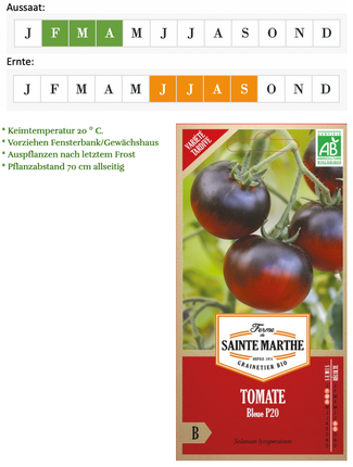 Tomate OSU blue P20 von Ferme de Sainte Marthe bei www.the-golden-rabbit.de