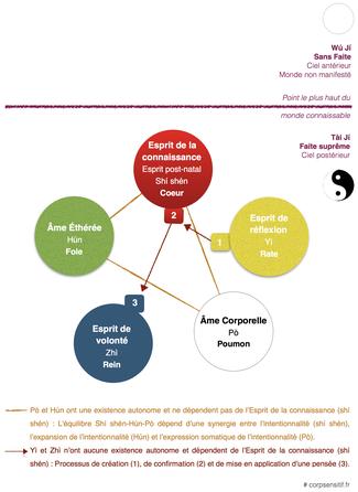 Fig. I - Les cinq Esprits (Wǔ Shén)