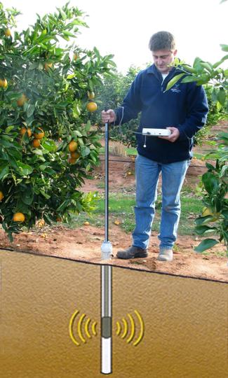 diviner 2000, humidité du sol, capteur portable, sentek, irrigation