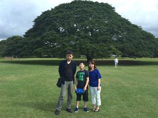 ハワイオアフ島貸切チャーターツアーにてモアナルアガーデンの日立の木(この木なんの木)のモンキーポッドの前で