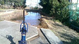 2月のトンボ池