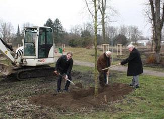 Die liberale Baumspendenaktion beginnt im citynahen Segeroth-Park.