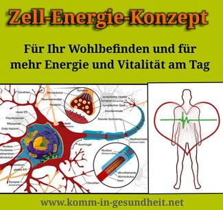 Zell-Energei-Konzept: optimale Vitalstoffversorgung der Zelle für mehr Energie