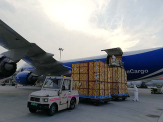Unloading of the giraffes after their arrival at Zhengzhou – courtesy ABC