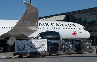 Committing to net zero emissions by 2050. Image: Air Canada