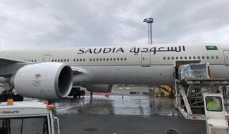 Connecting Scandinavia. Image: Saudia