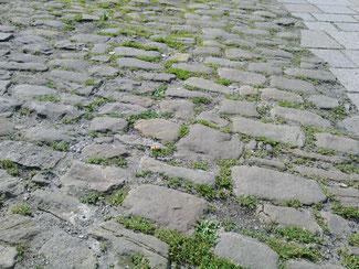 旧市街13世紀当時の石畳
